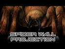 Spider Wall Projection Loop